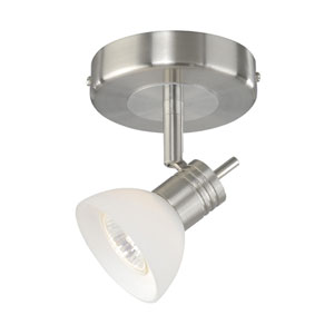 Satin Nickel Spot Light