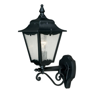 Whitney Textured Black One-Light Outdoor Wall Sconce
