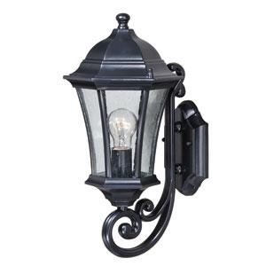 Aberdeen Shiny Black 8-Inch One-Light Outdoor Wall Light
