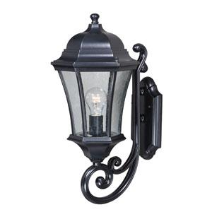 Aberdeen Shiny Black 10-Inch One-Light Outdoor Wall Light