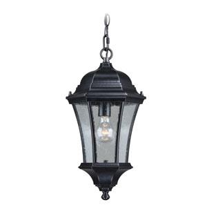 Aberdeen Shiny Black 10-Inch One-Light Outdoor Pendant Light