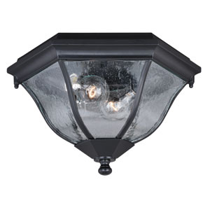 Aberdeen Shiny Black 13-Inch Two-Light Outdoor Flush Mount