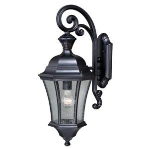 Aberdeen Dualux Shiny Black 10-Inch One-Light Outdoor Wall Light