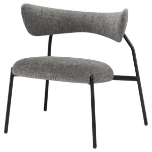 Dragonfly Gray and Black Dining Chair