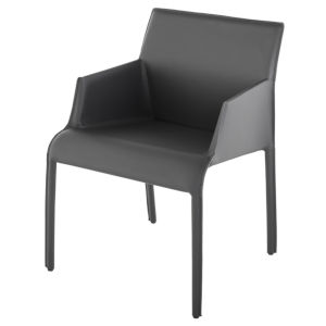 Delphine Dark Gray Dining Chair