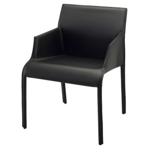 Delphine Matte Black Dining Chair