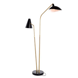 Dominique Polished Black and Gold Two-Light Floor Lamp