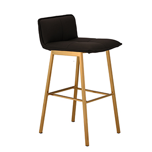 Sabrina Matte Black and Gold Counter Stool