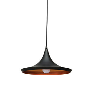 Euclid Black and Matte Gold 12-Inch One-Light Pendant