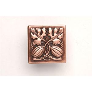 Antique Copper Autumn Squash Knob