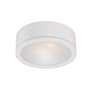 Tube White One-Light LED Outdoor Flush Mount