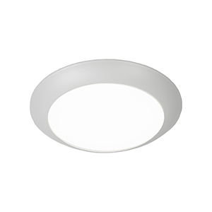 Disc White 4000K LED ADA Outdoor Flush Mount