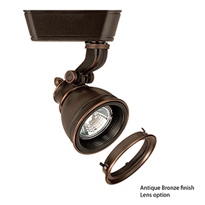 Caribe H Series Low Voltage 75W Antique Bronze Directional Spot with Lens