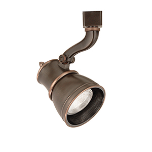 Caribe H Series 50W Antique Bronze Directional Spot