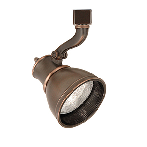 Caribe H Series 75W Antique Bronze Directional Spot
