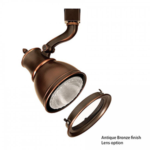 Caribe J Series 75W Antique Bronze Directional Spot with Lens