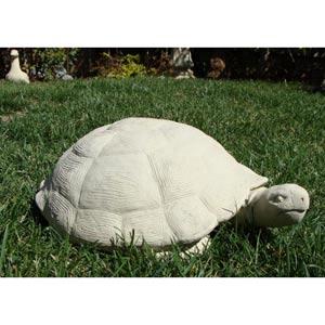 Desert Tortoise - X-Large