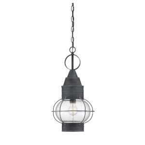 Enfield Oxidized Black One-Light Outdoor Hanging Lantern