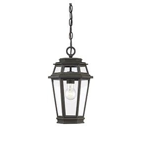 Holbrook Textured Bronze With Gold Highlights One-Light Outdoor Hanging Lantern