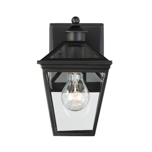 Ellijay Black One-Light Outdoor Wall Sconce