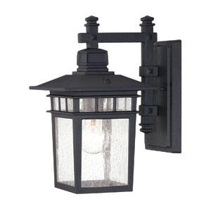 Linden 7-Inch Wall Lantern