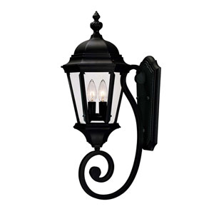 Wakefield Medium Textured Black Outdoor Wall-Mounted Lantern