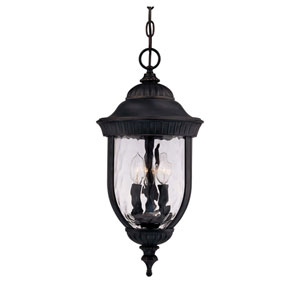 Castlemain Black with Gold Outdoor Hanging Lantern
