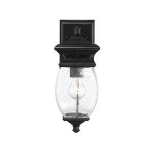 Seven Oaks Black One-Light Outdoor Wall Lantern