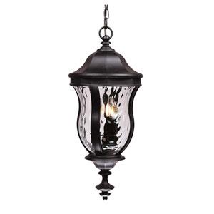 Monticello Black Three-Light Outdoor Hanging Lantern