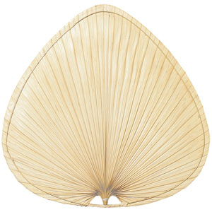 Natural Wide Oval Palm 22-Inch Blade, Set of Five