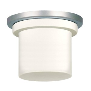 Zonix Satin Nickel One-Light 220V Fluorescent Light Kit