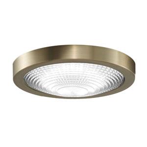 Spitfire Brushed Satin Brass LED Energy Star Outdoor Light Kit
