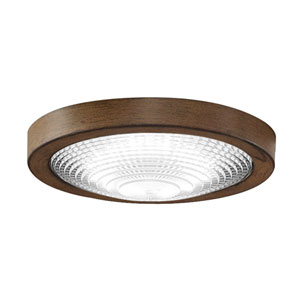 Spitfire Dirftwood LED Energy Star Outdoor Light Kit