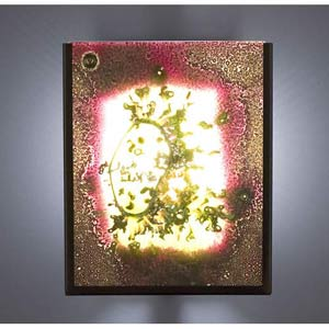 F/N Two Fluorescent Fuzzy Two-Light Wall Sconce