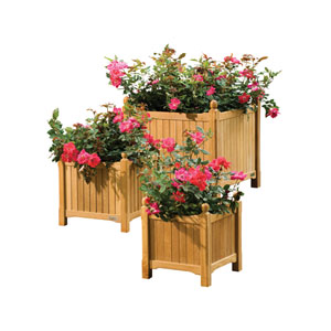 3-Piece Natural Shorea Planter Set