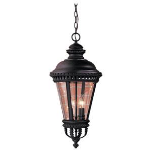 Augustus Black Four-Light Outdoor Pendant
