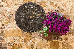French Bronze Sunface Clock