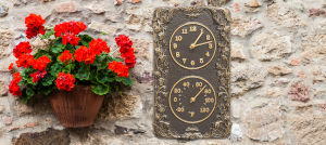 French Bronze Acanthus Combo Clock And Thermomter