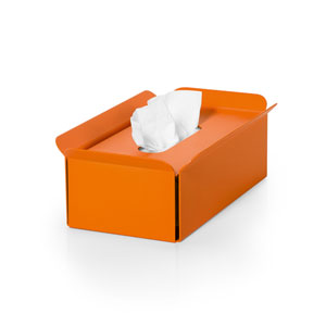Complements Orange Bathroom Tissue Box Holder