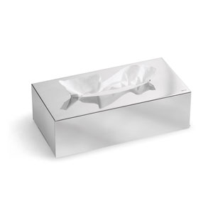 Nexio Polished Stainless Steel Tissue Box, Polished