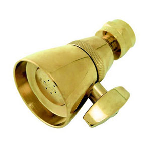 Accents Polished Brass 1-3/4-Inch Adjustable Spray Shower Head