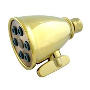 Hot Springs Polished Brass 6 Nozzle Power Jet Shower Head