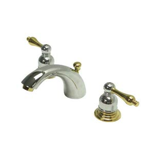 Elizabeth Chrome and Polished Brass Mini Bathroom Faucet