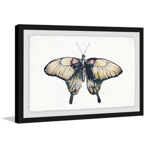 Cream Colored Wings 24 x 36 In. Framed Painting Print