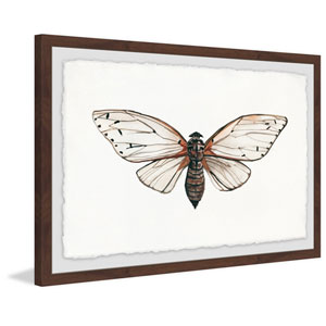 Tan Butterfly 20 x 30 In. Framed Painting Print
