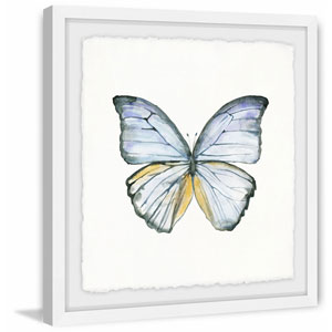 Blue Lace Wings 18 x 18 In. Framed Painting Print