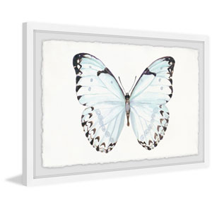Translucent Blue Wings 16 x 24 In. Framed Painting Print