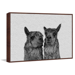 Llama Couple Floater 30 x 45 In. Framed Painting Print on Canvas