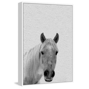 Big-Nosed Horse Floater 45 x 30 In. Framed Painting Print on Canvas