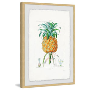 Botanical Pineapple 12 x 8 In. Framed Painting Print